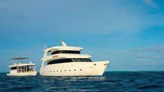 Мальдивские острова! Сафари тур на Яхте Мальдивиана