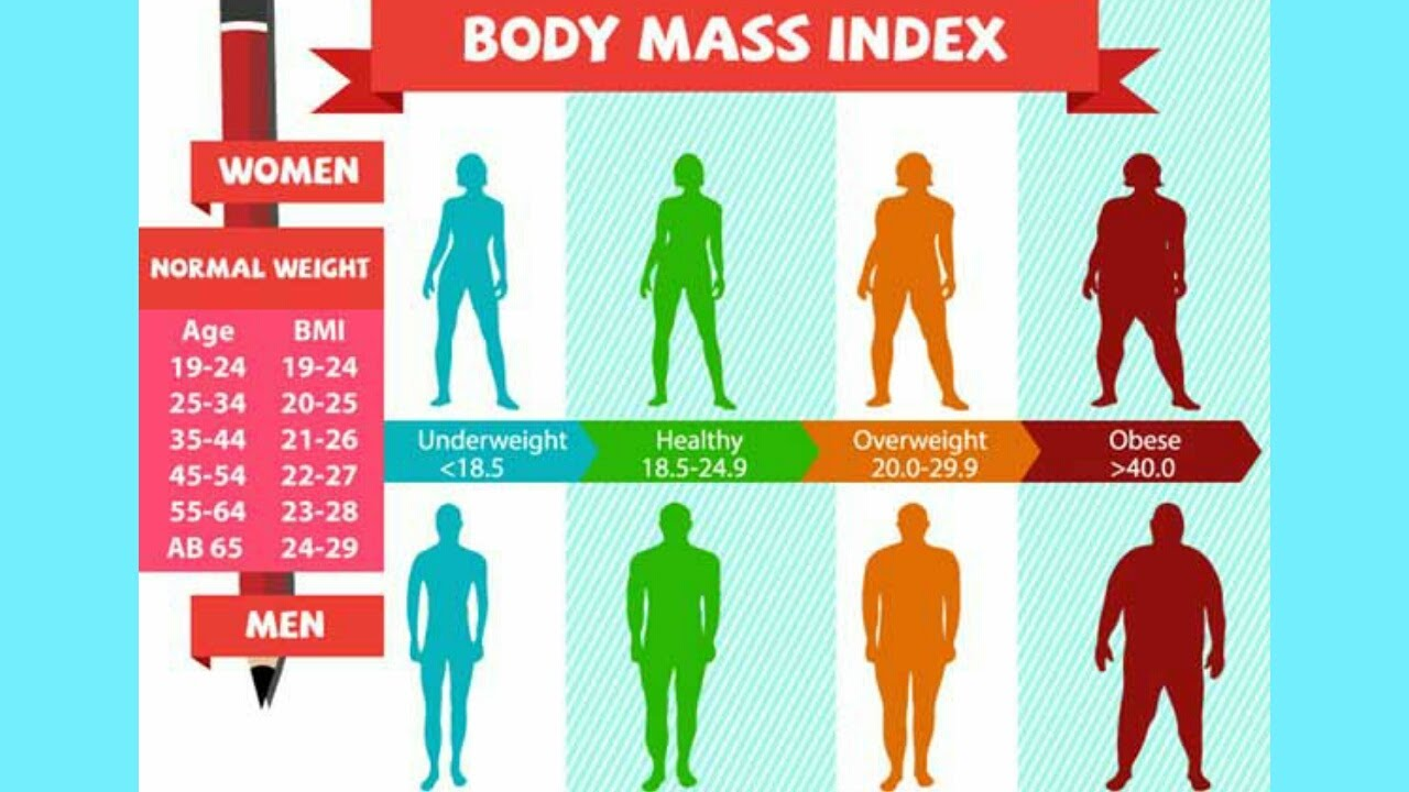 Bmi calculator for women and men & what is bmi? Youtube.