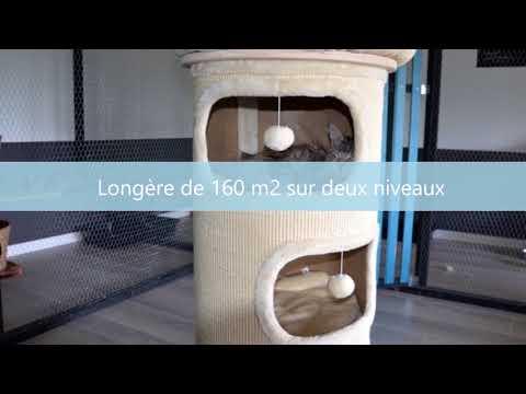Le Relais Gironde - Aux vêtements comme aux hommes, nous redonnons de l'emploi.de YouTube · Durée:  9 minutes 43 secondes