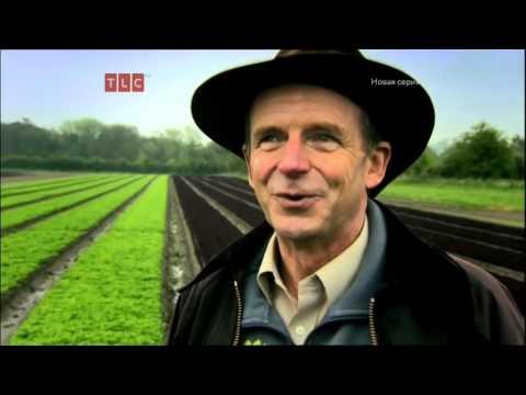 Курсы элементарной кулинарии Гордона Рамзи / Gordon Ramsay's Ultimate Cookery Course 01х 20