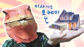 [Eng Sub]토케이게코에게 새로운 전세집(?)을 구…