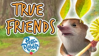 Peter Rabbit -  The Adventures of True Friends | Summer Cartoons for Kids