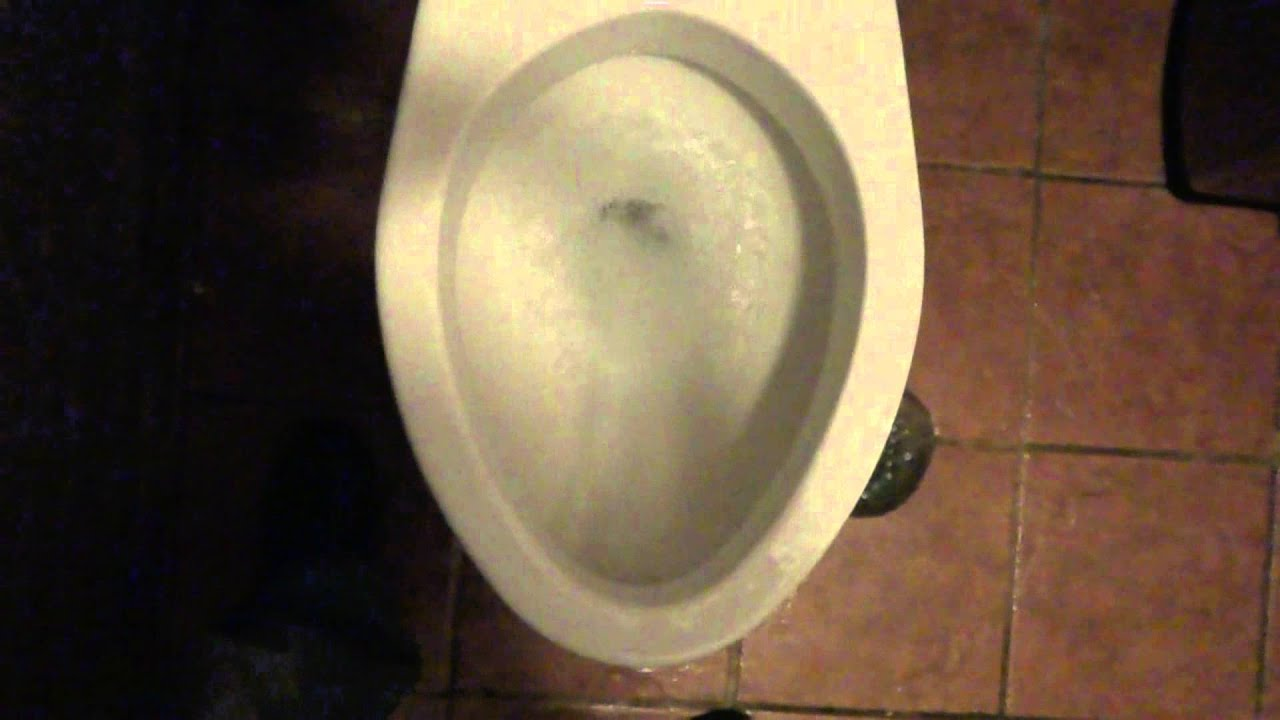 Toto Toilet at New York Pizza - YouTube