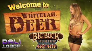 Big Buck Hunter Arcade PC Gameplay 1080p 60fps