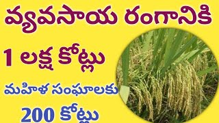1 lakh crore for agriculture - 200 crore for women's groups