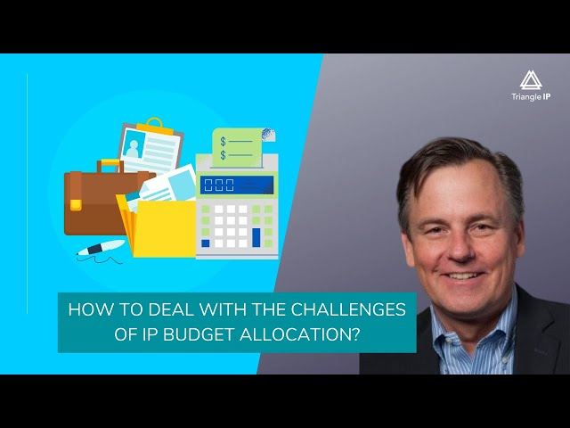 How to Deal with the Challenges of IP Budget Allocation? Triangle IP