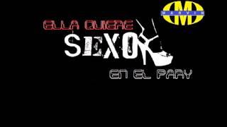 Sexo En El Pary Dj Marvin 2013 Mp3