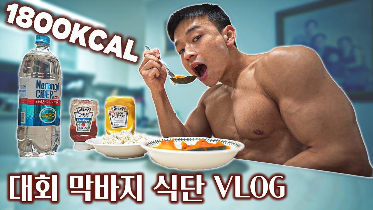 '하루하루 변하는 몸'을 위한 식단 공개합니다 | 1800KCAL 식단 | 대회 D-6 브이로그