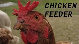 How To Build Automatic Chicken Feeder For Free
