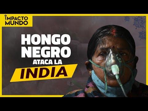 Nuevo ASESINO en la INDIA: EL HONGO NEGRO | Impacto Mundo