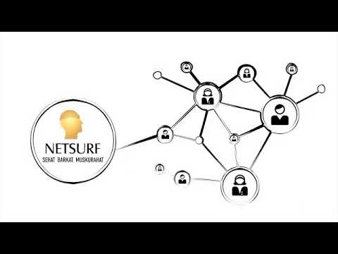 netsurf network business plan