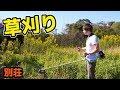 【別荘】夢の庭造り!!冬の草刈り PDS