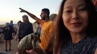 Египет  Лучшие экскурсии, отели, дайвинг, сафари, пирамиды, Каир, Шарм-Эль-Шейх