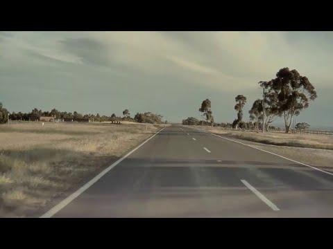 The Ace & TJ Show - Tesla's Autpilot SAVES Ducks Crossing the Road!