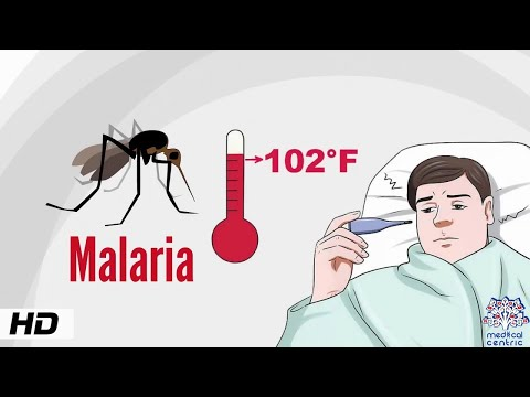 What is Malaria, Causes, Signs and Symptoms, Diagnosis and Treatment.