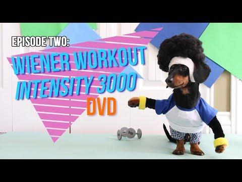 Episode Two: Wiener Workout Intensity 3000 DVD