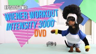 Episode Two: Wiener Workout Intensity 3000 DVD thumbnail