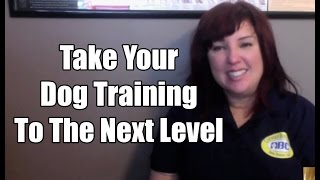 Advanced Dog Trainer Certification | Abc