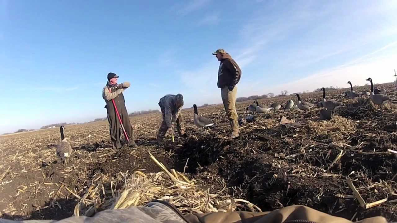 Digging Goose Blind Pits Youtube