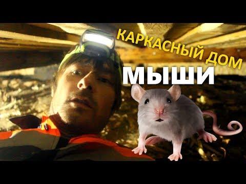 Мышиный рай в каркасном доме в деревне. Мыши съели утеплитель? Слабонервным не смотреть