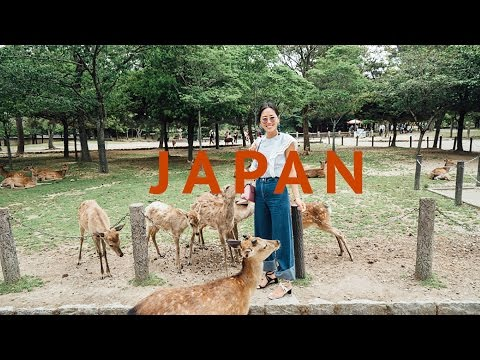 Kyoto Guide - Louis Vuitton Show, Sushi, and Attacked by Wild Deer | Song of Style