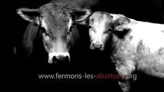 Annonce : Fermons les abattoirs (2016)