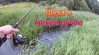 Щука в МИКРО ручье. С Днём Рыбака!