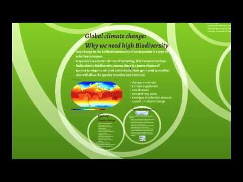 Ecology: Maintaining Biodiversity