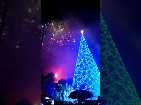 Lighting of Giant Christmas Tree 2k17 (Ligao City)