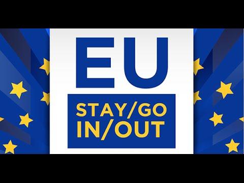EU Referendum - Debate Primer