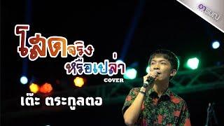 โสดจริงหรือเปล่า - วงแทมมะริน Feat.กุ้ง นนทิยา [cover] เต๊ะ ตระกูลตอ