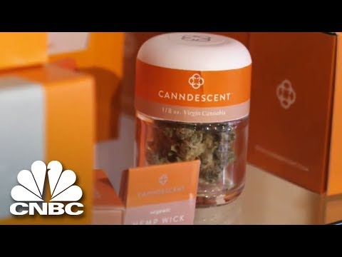 APC is an Exclusive Provider of CANNDESCENT