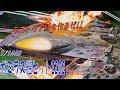 【プラモデル】1/1000 ガミラス艦セット2202 partⅠ の動画、YouTube動画。