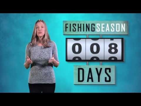 Oceans: Saving Fish And Fishing Communities