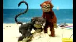 احلي مقطع سكس عند القرود