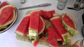 Healing & Detoxing With Watermelon Juice Part 1