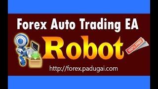 Forex robot in tamilnadu