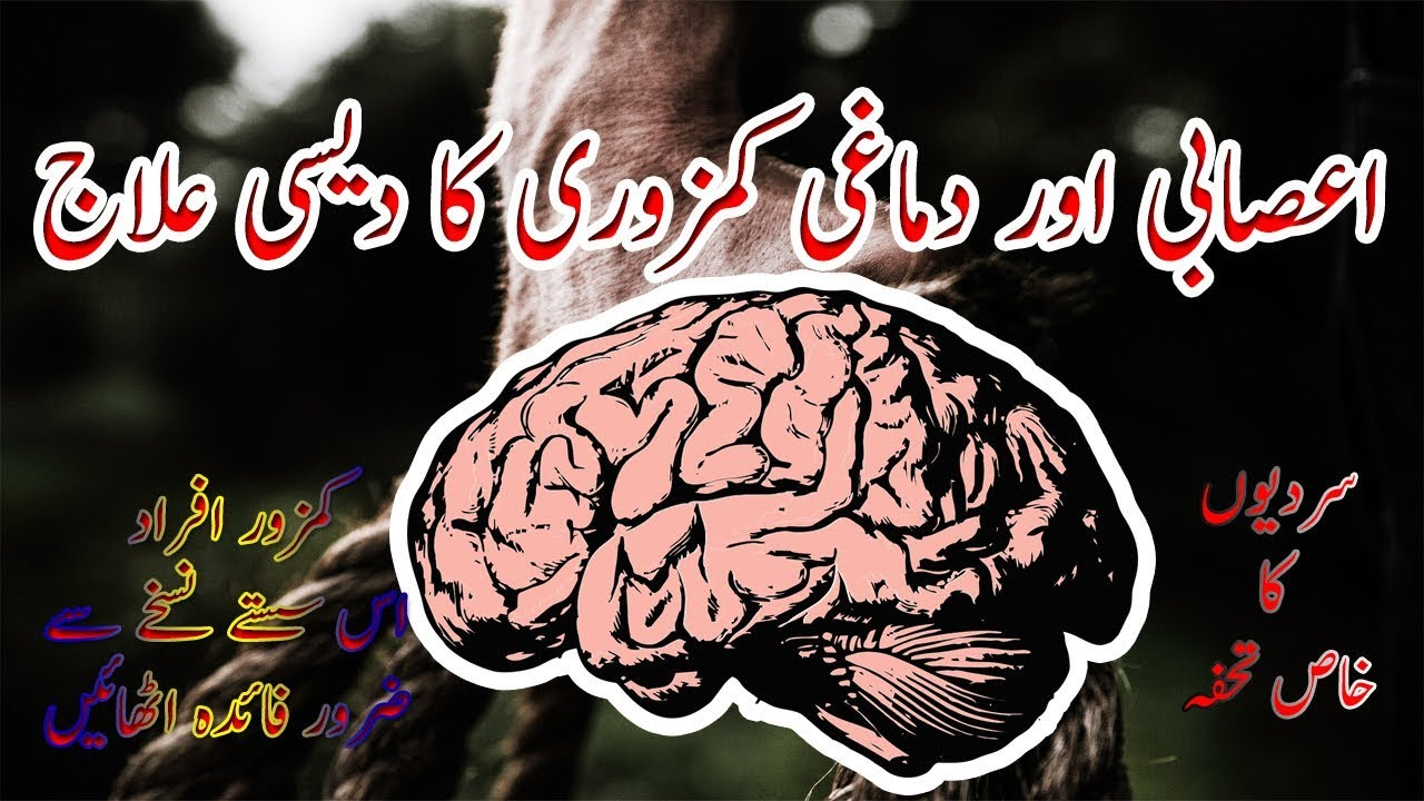 Damaghi aur Asabi kamzori ka Desi ilaj  - Increase Mind & Body Power