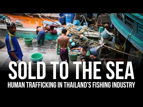 Sold to the Sea: Human Trafficking in Thailand's Fishing Industry