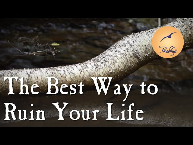 The Best Way to Ruin your Life - Prabhuji