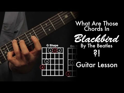 What Chords Are Those In Blackbird by The Beatles?!