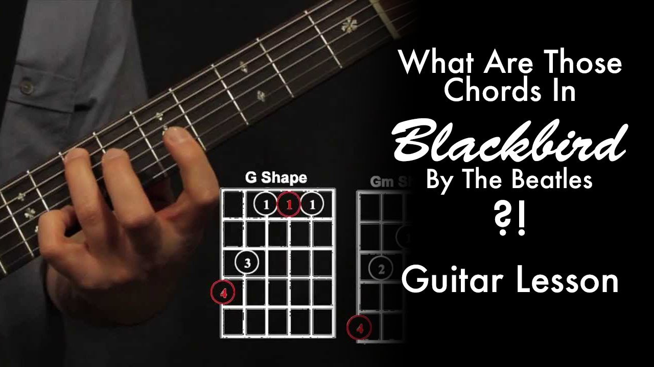 What Chords Are Those In Blackbird By The Beatles Youtube