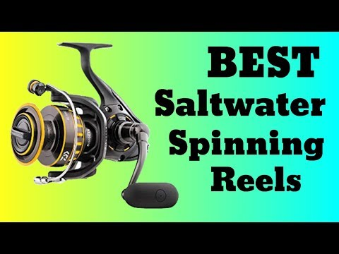 10 Best Saltwater Spinning Reels In 2019