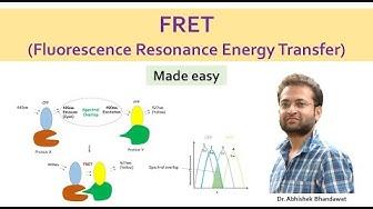 What is FRET (Fluorescence Resonance Energy Transfer)