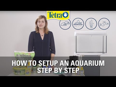 How To Set Up An Aquarium | Fish Tank Setup Step By Step