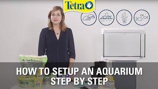How to set up an aquarium | Fish tank setup step by step
