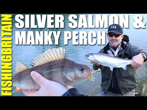 Land Locked Salmon & Urban Loch Perch - Fishing Britain episode 9