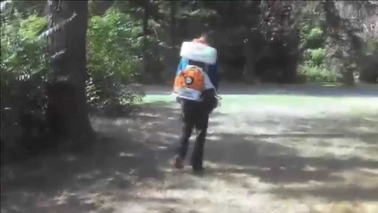 tick u0026 mosquito control charlottesville va backyard bug patrol