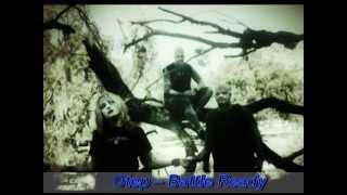 Female vocal in nu \ alternative metal