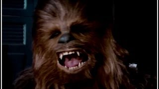 Chewie Here, Chewbacca There